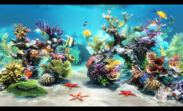 Live Aquarium Wallpaper Windows 7