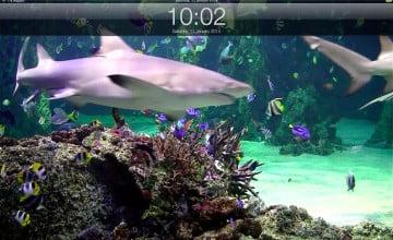 Live Aquarium Wallpaper with Sound