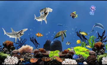 Live Fish Aquarium Wallpaper