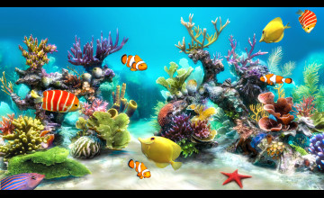 Live Fish Wallpaper for Windows