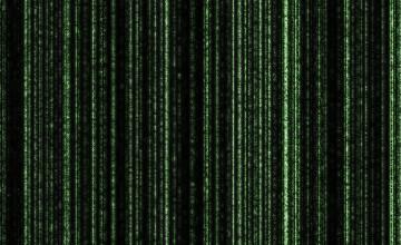 Live Matrix HD Wallpaper