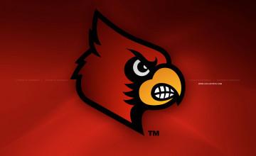 Louisville Cardinal Wallpaper