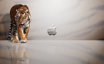MacBook Air HD Wallpaper