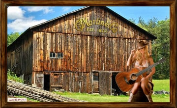 Martin Guitar Wallpaper
