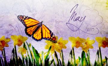 May Wallpaper for Desktop