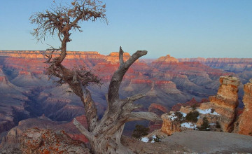 Microsoft Office Wallpapers Grand Canyon