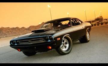 Muscle Cars Pictures Wallpaper
