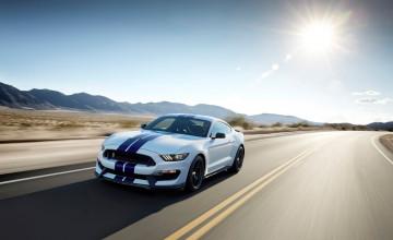 Mustang 4K Wallpaper