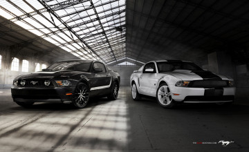 Mustang Screensavers and Wallpaper