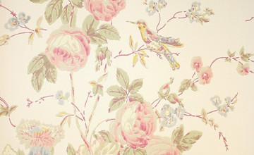 Muted Bird Wallpaper for Walls
