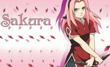 Naruto And Sakura Wallpaper