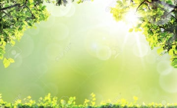 Nature Background Pictures