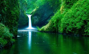 Nature Pictures Wallpaper Desktop