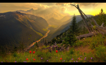 Nature Wallpapers High Quality