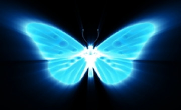 Neon Butterfly and Flowers Wallpaper