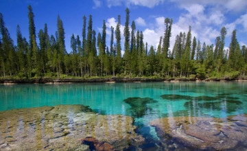 New Caledonia Wallpapers