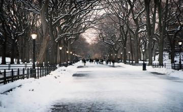 New York City Winter Wallpaper