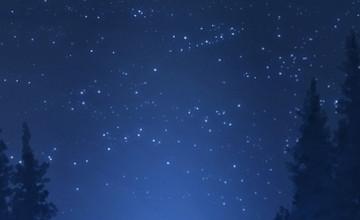 Night Sky Phone Wallpaper