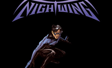Nightwing Wallpaper 1024x768