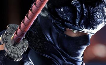 Ninja Gaiden Wallpaper