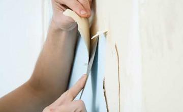 Non Toxic Wallpaper Remover