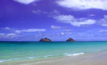 Ocean Wallpapers and Screensavers