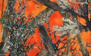 Orange Camo Wallpaper for Bedrooms