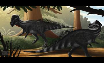 Pachycephalosaurus Wallpaper