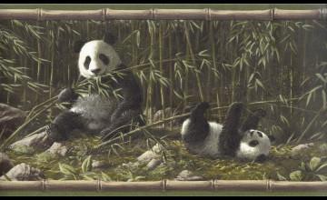 Panda Wallpaper Borders