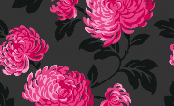 Pink and Black Flower Wallpaper