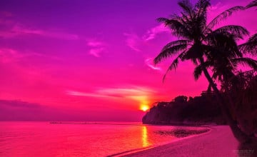 Pink Beach Sunset Wallpaper