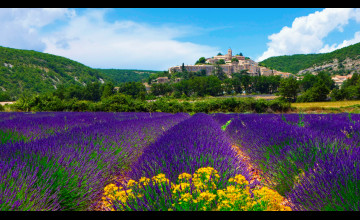 Provence France Wallpaper