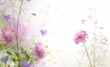 Purple Flower Wallpaper Border