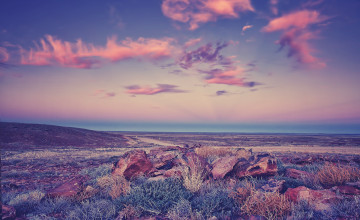 Purple Landscape Wallpaper