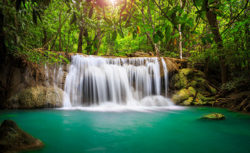 Rainforest Waterfall Wallpaper