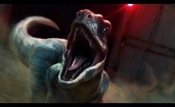 Raptor Wallpapers