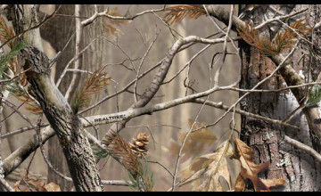 Realtree Camo Wallpaper Border