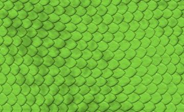 Reptile Textured Wallpaper