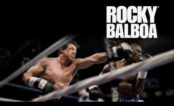 Rocky Balboa Wallpaper