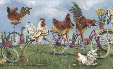 Rooster Wallpaper Border Kitchen