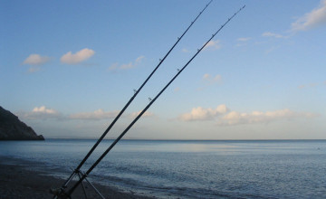 Saltwater Fishing Wallpaper