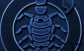Scorpion iPhone Wallpaper