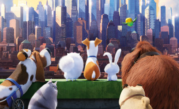 Secret Life of Pets Wallpaper