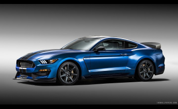 Shelby Ford Mustang GT350 Wallpaper