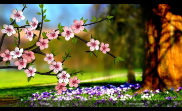 Spring Flowers Wallpaper 3D