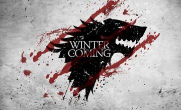 Stark Wallpaper Covering