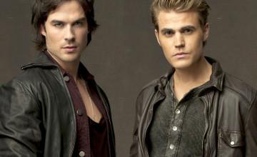 Stefan and Damon Salvatore Wallpaper