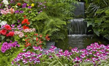 Summer Flower Garden Wallpaper