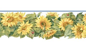 Sunflower Wallpaper Borders for Kitchen