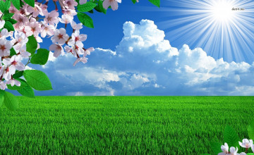 Sunny Day Wallpaper Desktop